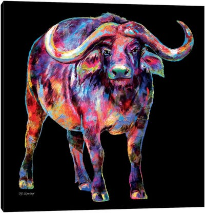 Water Buffalo Canvas Art Print