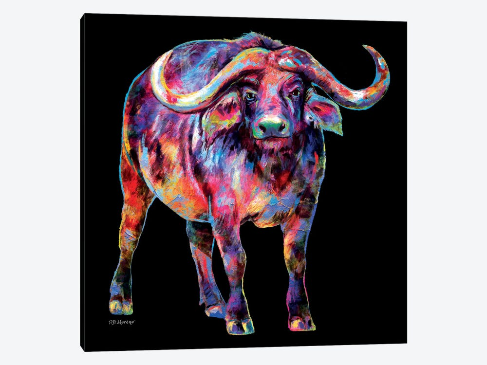 Water Buffalo by P.D. Moreno 1-piece Canvas Wall Art