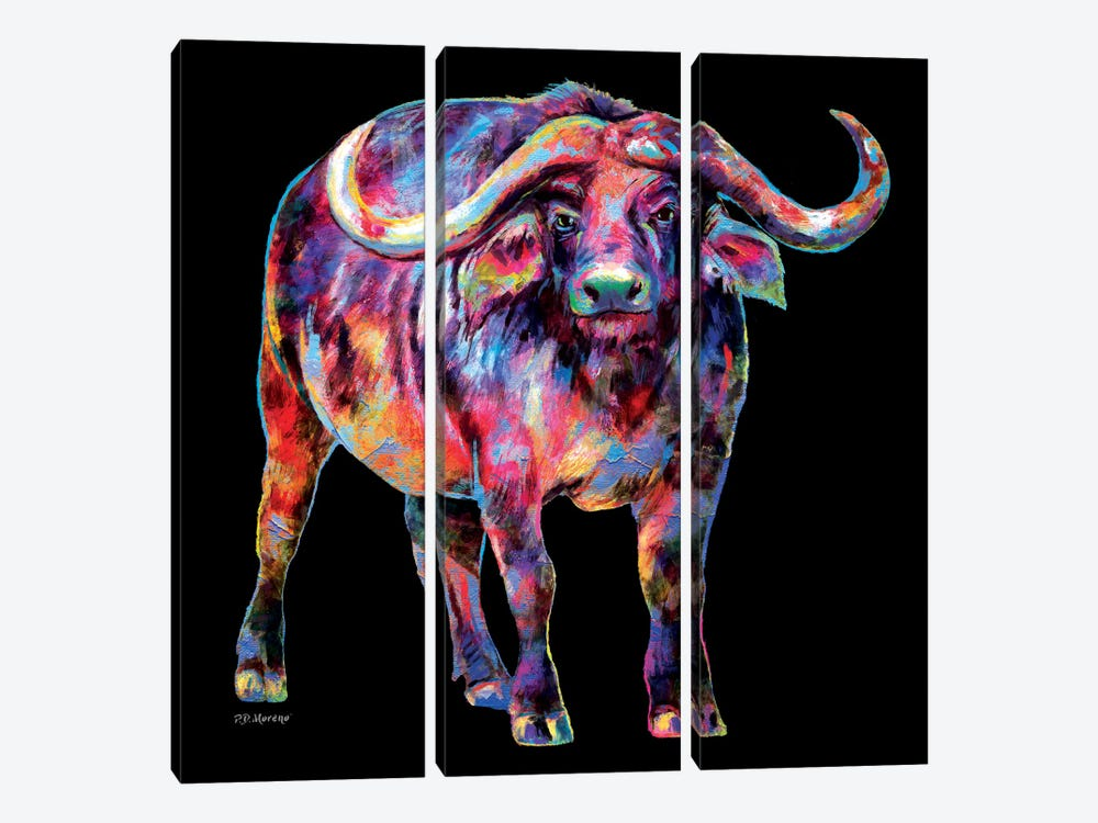 Water Buffalo by P.D. Moreno 3-piece Canvas Wall Art