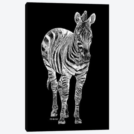 Zebra In Black And White Canvas Print #PDM75} by P.D. Moreno Canvas Art Print