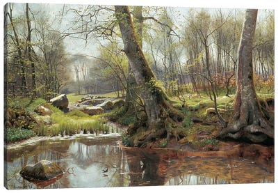 A Woodland Spring Canvas Art Print