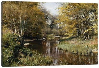 A Wooded River Landscape, 1909  Canvas Art Print