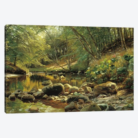 A Woodland River in Summer Canvas Print #PDR7} by Peder Monsted Canvas Art