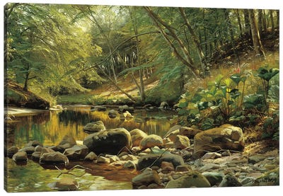 A Woodland River in Summer Canvas Art Print
