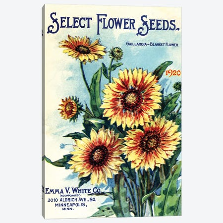 Select Flower Seeds, 1920, from the Andersen Horticultural Library Canvas Print #PDX112} by Piddix Canvas Art