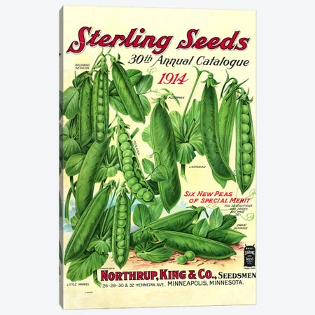 Sterling Seeds, 1914, from the Andersen Horticultural Library Canvas Print #PDX122} by Piddix Canvas Art Print