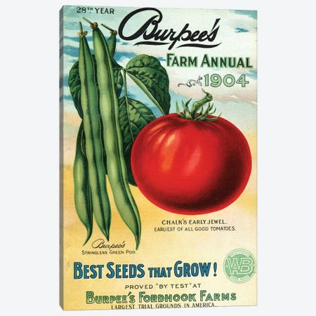 1904 Seed Catalog from the Andersen Horticultural Library Canvas Print #PDX1} by Piddix Canvas Print
