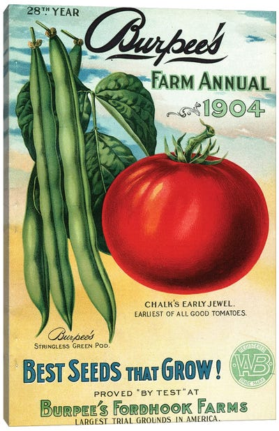 1904 Seed Catalog from the Andersen Horticultural Library Canvas Art Print