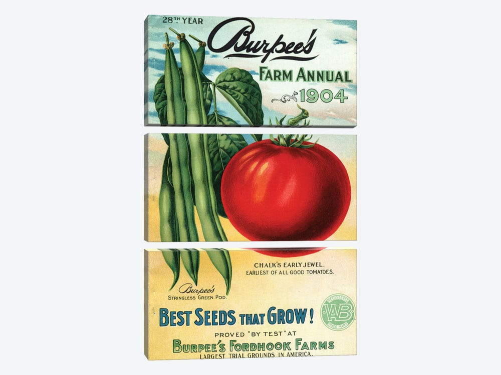 1904 Seed Catalog from the Andersen Horticultural Library by Piddix 3-piece Canvas Art Print