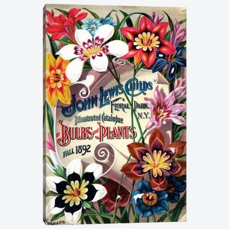 Bulbs and Plants, 1892, from the Andersen Horticultural Library Canvas Print #PDX33} by Piddix Canvas Print