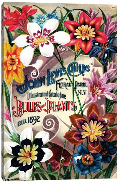 Bulbs and Plants, 1892, from the Andersen Horticultural Library Canvas Art Print