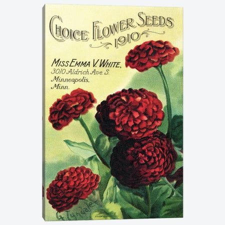 Choice Flower Seeds, 1910, from the Andersen Horticultural Library Canvas Print #PDX43} by Piddix Canvas Art