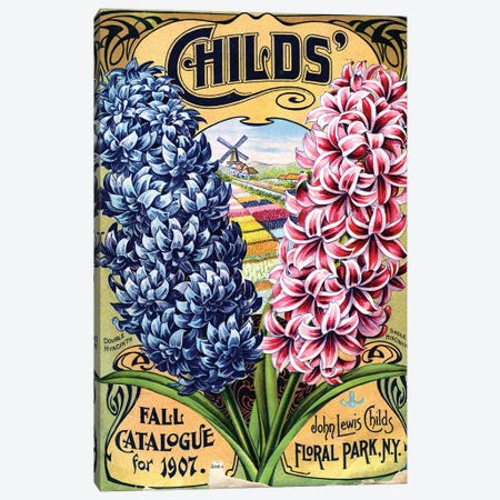 Double Hyacinth, 1907, from the Andersen Horticultural Library Canvas Print #PDX48} by Piddix Canvas Art
