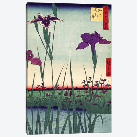 Iris Garden, Japanese Woodcut 1800s Canvas Print #PDX80} by Piddix Canvas Art