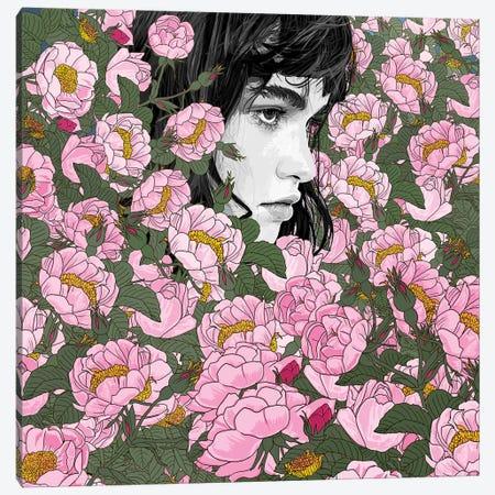 Come Canvas Print #PED11} by Pedro Tapa Canvas Art