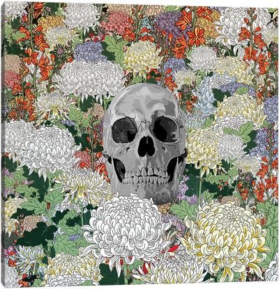 Life And Death Canvas Art Print