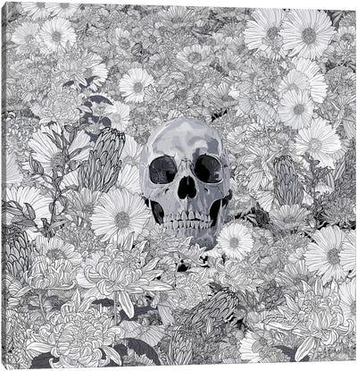 The Silent Canvas Art Print