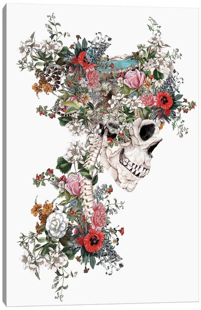 Skull Queen Canvas Art Print