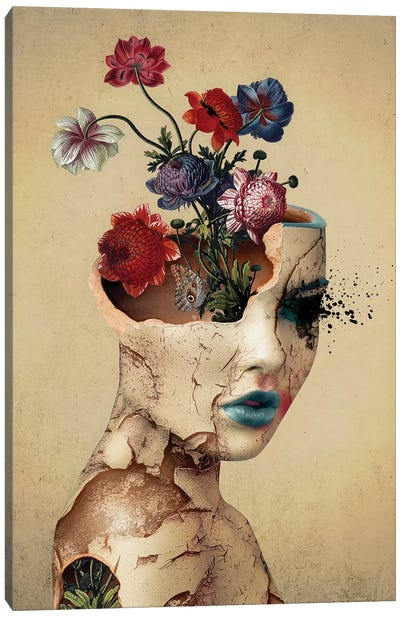 Broken Beauty Canvas Art Print
