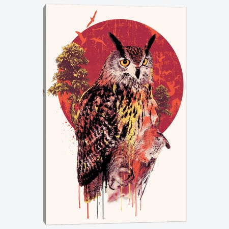 Owl IV Canvas Print #PEK157} by Riza Peker Canvas Wall Art
