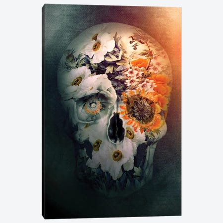 Skull Still Life Canvas Print #PEK166} by Riza Peker Art Print