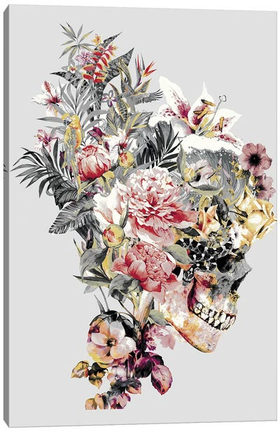 Skull XII Canvas Art Print