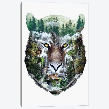 Tiger Canvas Print #PEK175} by Riza Peker Canvas Wall Art