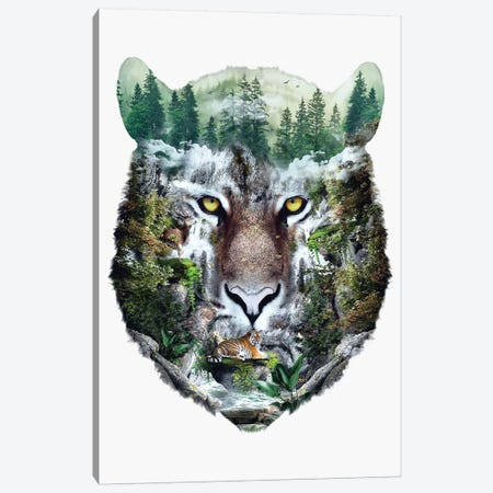 Tiger Canvas Print #PEK175} by Riza Peker Canvas Wall Art