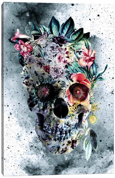 Floral Skull Series: Memento Te Hominem Esse Canvas Print #PEK17