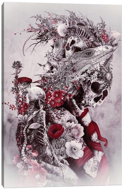 Lizard Canvas Art Print