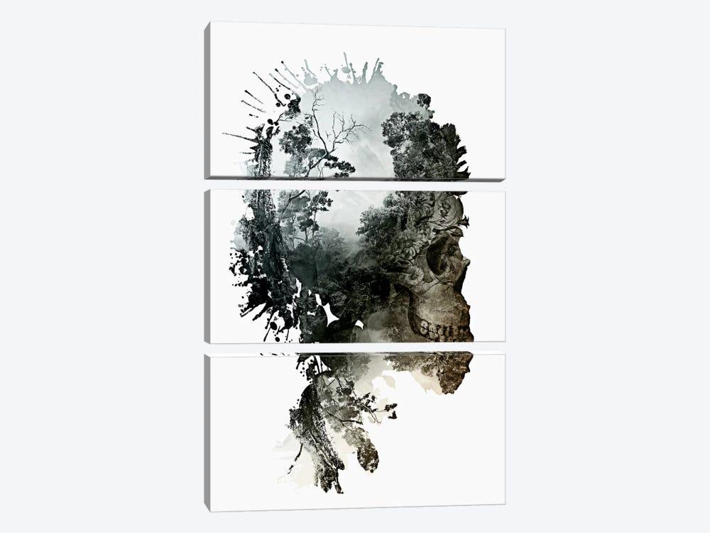 Metamorphosis by Riza Peker 3-piece Canvas Wall Art