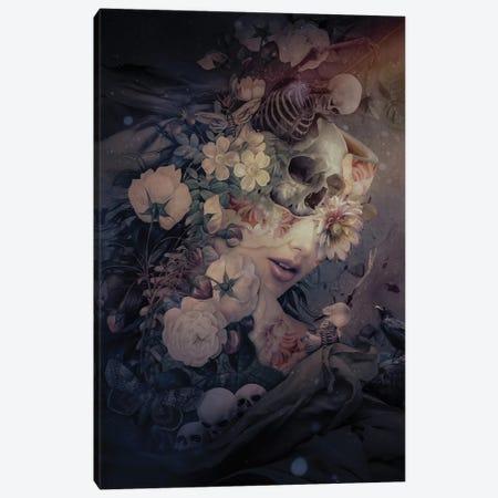 Dark To Light Ii Canvas Print #PEK190} by Riza Peker Canvas Print
