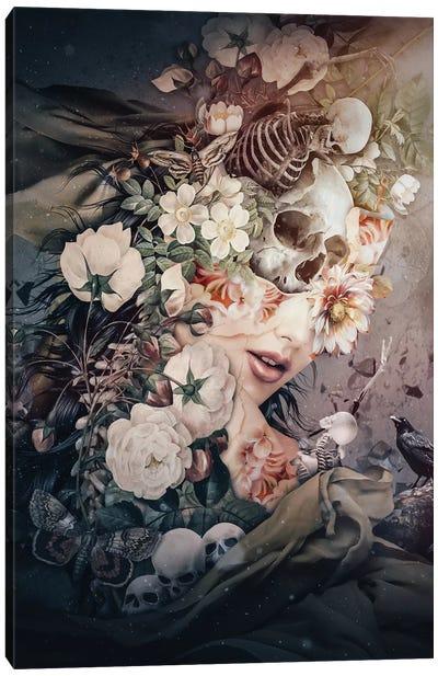 Dark To Light Canvas Art Print