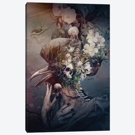 Raven Iii Canvas Print #PEK193} by Riza Peker Art Print