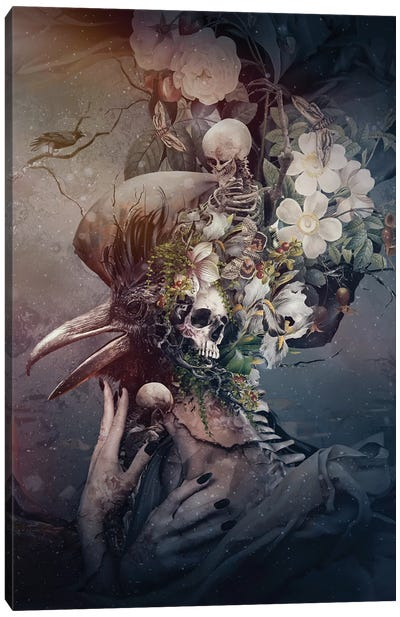 Raven Iii Canvas Art Print