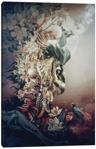 Owl Fantasy Canvas Art Print
