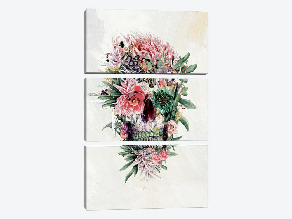 Momento Mori I by Riza Peker 3-piece Canvas Art Print