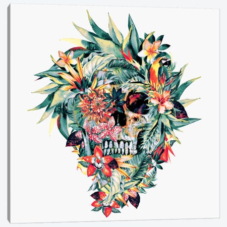 Momento Mori V Canvas Print #PEK23} by Riza Peker Canvas Wall Art