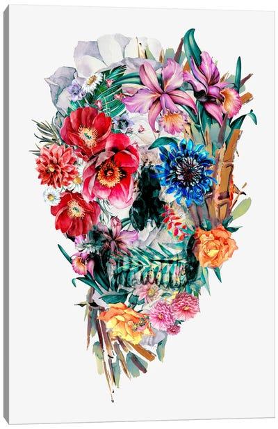 Momento Mori VI Canvas Art Print