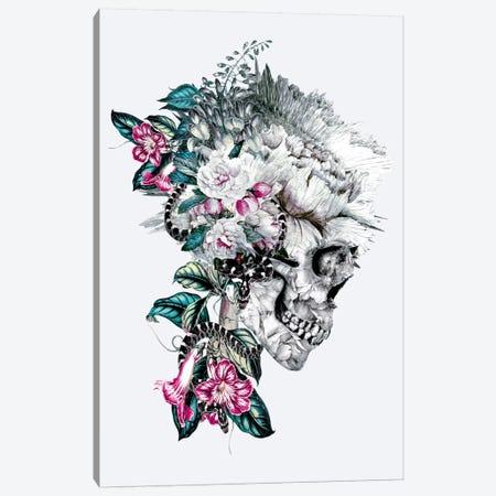 Momento Mori VIII Canvas Print #PEK26} by Riza Peker Canvas Print