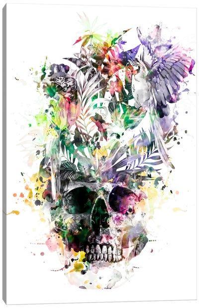 Parrots II Canvas Art Print