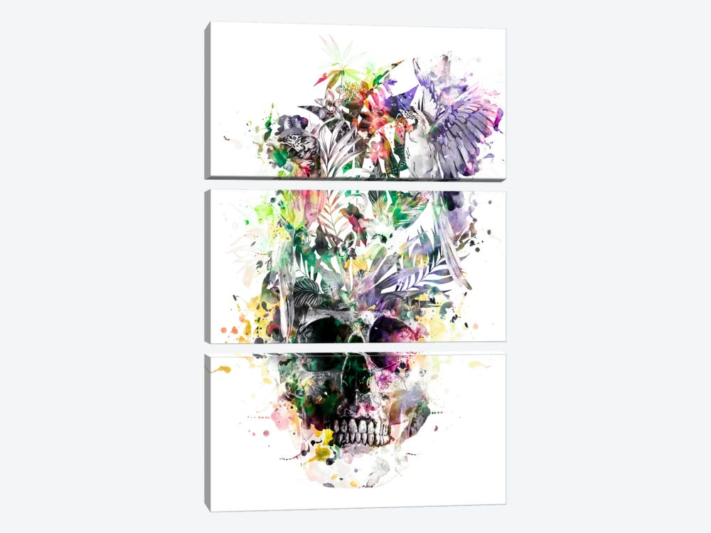 Parrots II by Riza Peker 3-piece Canvas Print