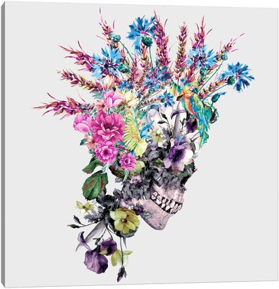 Punk I Canvas Art Print