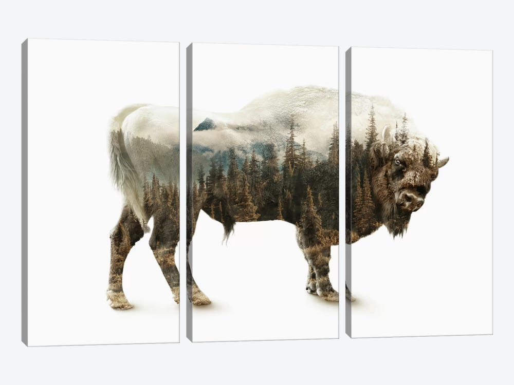 Bison by Riza Peker 3-piece Canvas Wall Art