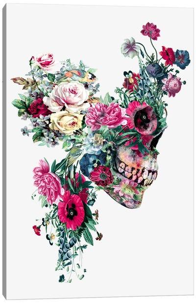 Floral Skull Series: VII Canvas Print #PEK36