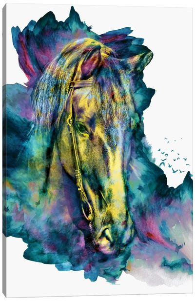 Chained Beauty Canvas Art Print