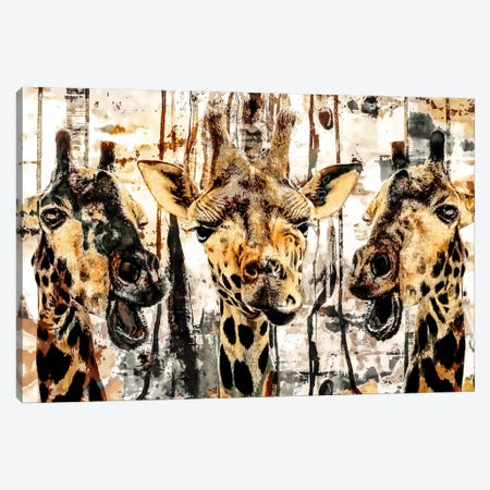 Giraffes Canvas Print #PEK45} by Riza Peker Canvas Print