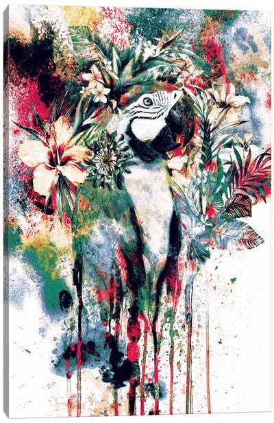 Parrot Canvas Art Print