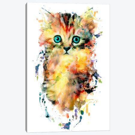 Kitten Canvas Print #PEK49} by Riza Peker Canvas Artwork