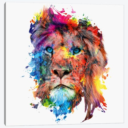 Lion Canvas Print #PEK50} by Riza Peker Art Print